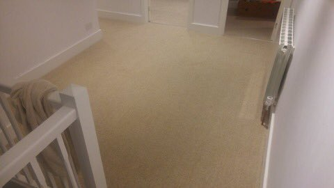 Riviera 100% naturally sustainable Eco carpet 1